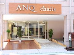 ANQ charisの写真3