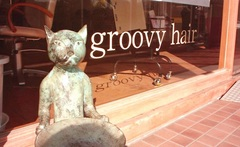 groovy hairの写真3